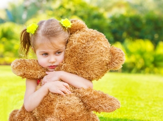 teddy bear security