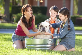 Keeping House Pet-Clean