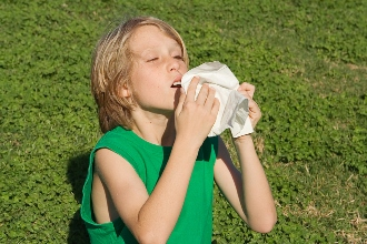 child sneezing during the summer