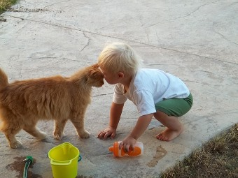 little boy and cat