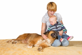 happy-mom-baby-petting-family-dog