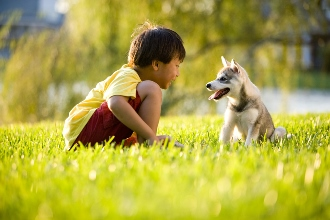 Boy and Dog in grass